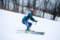 I-й этап Кубка Тулы по горным лыжам и сноуборду., Фото: 37