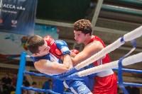 Гран-при Тулы по боксу-2017, Фото: 30