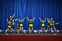 Открытый Чемпионат Тульской области по черлидингу, Фото: 18