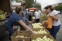 Алексей Дюмин посетил региональную фермерскую ярмарку, Фото: 11