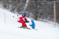 Третий этап первенства Тульской области по горнолыжному спорту., Фото: 13