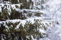 Тула после снегопада. 23.12.2014, Фото: 36