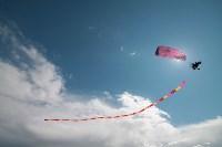 Фестиваль Тульское небо. 1 августа 2015, Фото: 33