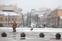 Мартовский снег в Туле, Фото: 90