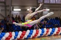 Соревнования по художественной гимнастике 31 марта-1 апреля 2016 года, Фото: 122