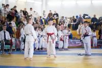 Чемпионат и первенство Тульской области по восточным боевым единоборствам, Фото: 6