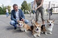 Фестиваль помощи животным в Центральном парке, Фото: 14