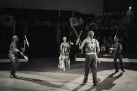 «Шоу Слонов» в Тульском цирке, Фото: 29