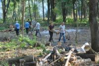 В Туле проводят работы по благоустройству зон отдыха. 26 июля 2014 год, Фото: 5