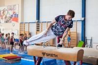 Мужская спортивная гимнастика в Туле, Фото: 30