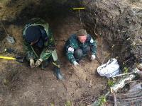 В Тульской области в лесу поисковики нашли захоронение артиллеристов и лошадей, Фото: 4