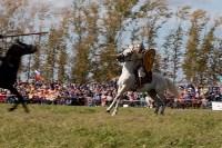 637-я годовщина Куликовской битвы, Фото: 87