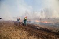 В Белевском районе провели учения по тушению лесных пожаров, Фото: 8