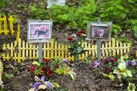 Кладбище домашних животных в Туле, Фото: 43