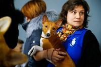 Выставка собак в Туле, Фото: 54