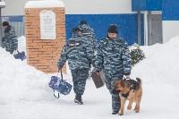 """""""Студенческий десант"""" - 2017., Фото: 29"""