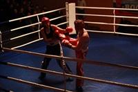 В Туле прошла матчевая встреча звезд кикбоксинга, Фото: 35