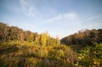 Золотая осень в Тульской области, Фото: 59