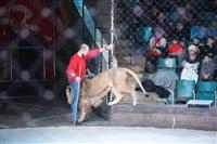 Новая программа в Тульском цирке «Нильские львы». 12 марта 2014, Фото: 3