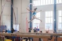 Первенство ЦФО по спортивной гимнастике, Фото: 39