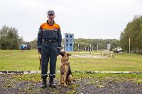Испытания кинологов в Тульском спасательном центре, Фото: 23