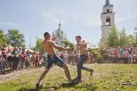В Тульской области прошел фестиваль крапивы, Фото: 222