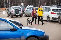 Рейд по парковкам на газонах, Фото: 21