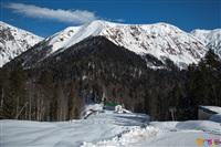 Состязания лыжников в Сочи., Фото: 30
