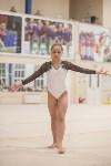 Первенство ЦФО по спортивной гимнастике, Фото: 196