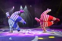 Цирковое шоу, Фото: 38