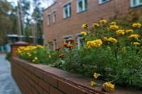 Три места для яркого загородного отдыха в Тульской области, Фото: 9