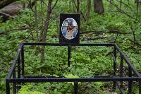 Кладбище домашних животных в Туле, Фото: 62