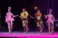 В Тульском цирке прошла премьера аква-шоу, Фото: 27
