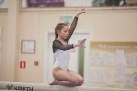 Первенство ЦФО по спортивной гимнастике, Фото: 172