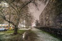 Апрельский снегопад - 2021, Фото: 2