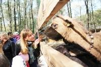 В Новомосковске открылся мини-зоопарк, Фото: 19