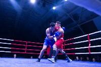 В Туле прошли финальные бои Всероссийского турнира по боксу, Фото: 106