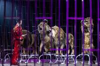 Шоу фонтанов «13 месяцев»: успей увидеть уникальную программу в Тульском цирке, Фото: 221