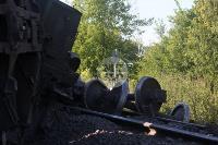 В Тульской области грузовой поезд сошел с рельсов, Фото: 13