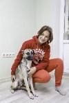 Пристроенные домашние животные, Фото: 13