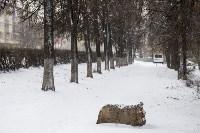 Мартовский снег в Туле, Фото: 64