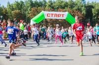 """В Центральном парке прошел """"Тульский марафон 2017"""", Фото: 273"""