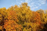Золотая осень в Туле-2019, Фото: 124