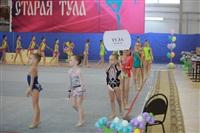 IX Всероссийский турнир по художественной гимнастике «Старая Тула», Фото: 2