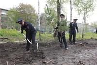 Высадка молодого леса, Фото: 25