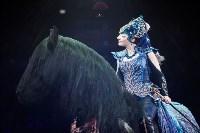Туляков приглашают на новогоднее представление «Ёлка в цирке», Фото: 34