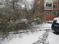 Последствия непогоды в Туле, Фото: 4