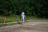 В Ясной поляне стартовал турнир по конному спорту, Фото: 137