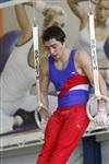 Первый этап Всероссийских соревнований по спортивной гимнастике среди юношей - «Надежды России»., Фото: 26