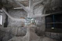 Новое здание тульской экзотариума, Фото: 7